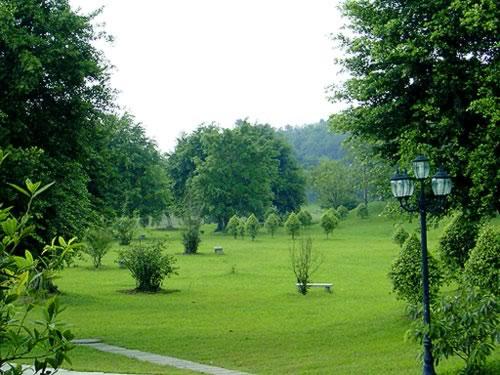 Daifushan Forest Park